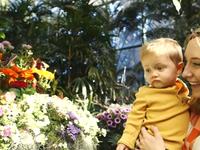 Lạc vào thế giới cổ tích trong khu vườn bướm tại sở thú San Diego, Mỹ