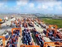 Dự báo kim ngạch xuất khẩu của Việt Nam có thể đạt 239 tỷ USD