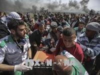 Một nhà báo Palestine thiệt mạng trong đụng độ tại Dải Gaza