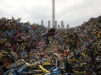 """Những """"nghĩa trang xe đạp"""" khổng lồ tại Trung Quốc"""