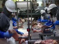 Thịt lợn Mỹ 'gặp khó' khi vào thị trường Trung Quốc