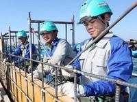 Nhật Bản nới lỏng quy định tuyển chọn lao động nước ngoài