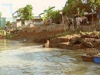 Sạt lở ở Đồng bằng sông Cửu Long diễn biến phức tạp