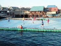 Đến Thái Lan xem đá bóng trên mặt nước
