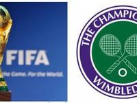 World Cup và Wimbledon: Những điều thú vị