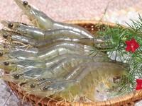 Vietnam tops list of shrimp exporters to Canada