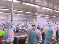 Mỹ tăng cường giám sát thủy hải sản nhập khẩu