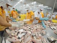 Cá da trơn Việt Nam trước thời điểm thách thức tại thị trường Mỹ