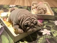 Độc lạ kem hình chó 'gây sốt'