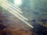 Monsanto - Thủ phạm cung cấp chất độc màu da cam trong chiến tranh Việt Nam