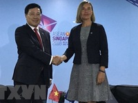 Conference tackles solutions to remove 'yellow card' on Vietnamese seafood