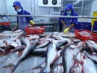 FSIS đề xuất công nhận Việt Nam đủ điều kiện xuất khẩu cá da trơn vào thị trường Mỹ