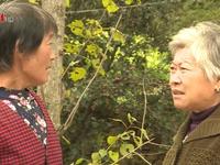 Hệ lụy từ già hóa dân số nhanh chóng ở Trung Quốc