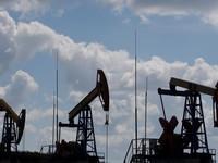 Mỹ tham vấn giúp Ấn Độ tìm kiếm nguồn cung dầu mỏ thay thế