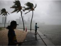 Bão nhiệt đới Gordon đổ bộ vào Florida, Mỹ
