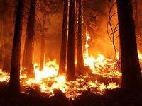 Lại bùng phát cháy rừng tại bang California, Mỹ