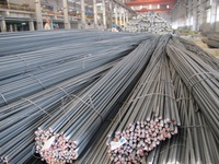 Vietnamese steel under pressure from trade defence lawsuits
