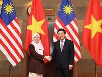 Vietnam-Malaysia strategic partnership achieves significant progress