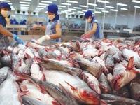 Japanese market imports catfish from  Vietnam