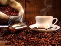 Vietnamese coffee in the American market