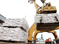 Vietnam - China rice trade promoted