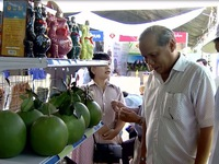 Fair to promote agro-products of the South Central region