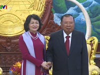 Vietnam - Laos relationship promoted