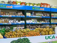 Safe agricultural cooperative union presented in Vietnam