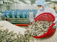 Vietnam develops hi-tech water treatment system for shrimp farms