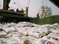 Vietnam hosts world conference on rice exports