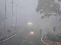 Sương mù dày đặc làm đình trệ giao thông tại New Delhi, Ấn Độ