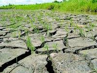 Vietnam pursues policies on climate change adaptation