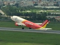 Vietjet to carry peach flower, ochna integerrima, on Tet flights