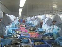 Việt Nam cần tận dụng mọi cơ hội từ các FTA