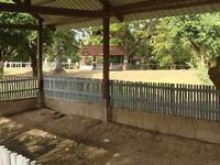 Thảm họa diệt chủng tại Campuchia - Ký ức đau thương