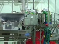 Đầu mối nông sản thế giới - Đích đến không còn xa của nông nghiệp Việt Nam