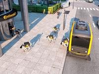 CES 2019: Chó robot sắp thay shipper giao hàng tận cửa?