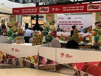 Vietnamese agricultural products expected to enter AEON retail chain