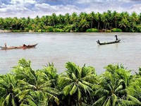 "Ben Tre ""Coconut Kingdom"" attractive with unique tourism products"