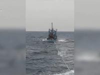 Cứu tàu cá Bình Định gặp nạn trên biển