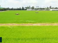 Hỗ trợ nông dân ứng dụng công nghệ 4.0 vào sản xuất