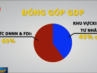 Large family businesses make up 25% of Vietnam's GDP