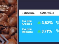 Giá cà phê thế giới tăng lên mức đỉnh của nhiều năm