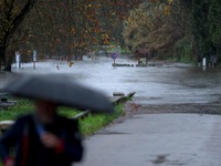 Bão Elsa gây thương vong tại Nam Âu, ít nhất 5 người thiệt mạng