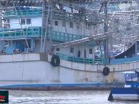 Mua bảo hiểm cho tàu cá 67: Đã khó lại càng thêm khó!