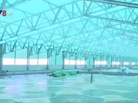 Bình Định: Đề xuất quy hoạch khu nuôi tôm công nghệ cao