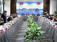 Vietnam, China review 15-year implementation of Tonkin Gulf Fishery Agreement