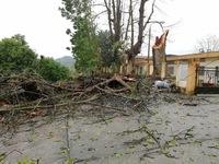 Heavy rains, cyclones wreak havoc in Northwestern Vietnam