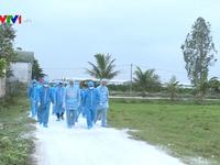 Các tổ chức Quốc tế giúp Việt Nam ứng phó với dịch tả lợn châu Phi