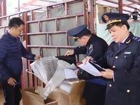 Triển khai thủ tục và quản lý hải quan tập trung